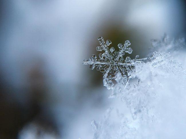 ghiaccio frozen
