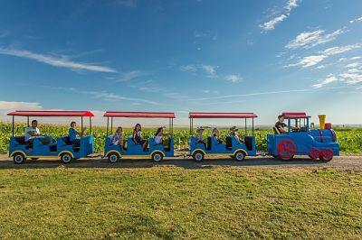 Treno con bimbi nel parco